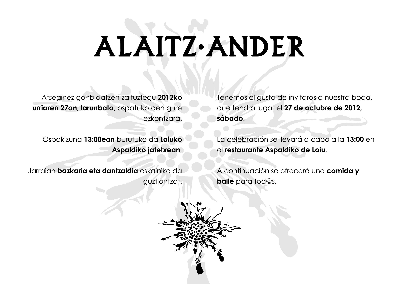 Alaitz eta Ander: ezkontza
